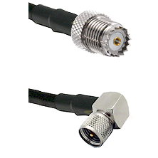 Mini-UHF Female on Belden 83242 RG142 to Mini-UHF Right Angle Male Cable Assembly