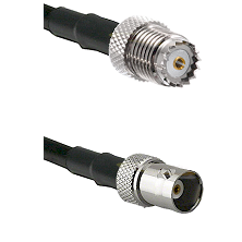 Mini-UHF Female on LMR100 to BNC Female Cable Assembly