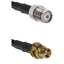 Mini-UHF Female on LMR100 to MCX Female Bulkhead Cable Assembly