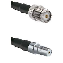 Mini-UHF Female on LMR100/U to QMA Female Cable Assembly