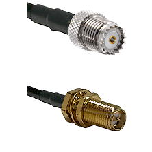 Mini-UHF Female on LMR100 to SMA Reverse Polarity Female Bulkhead Cable Assembly