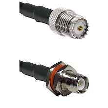 Mini-UHF Female on LMR100 to TNC Reverse Polarity Female Bulkhead Cable Assembly