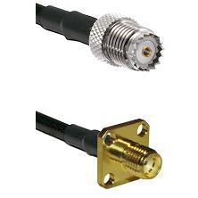 Mini-UHF Female on LMR100 to SMA 4 Hole Female Cable Assembly