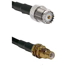 Mini-UHF Female on LMR100 to SSMC Male Bulkhead Cable Assembly