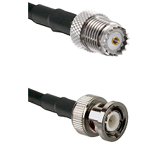 Mini-UHF Female on RG142 to BNC Male Cable Assembly