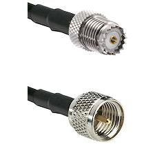 Mini-UHF Female on RG142 to Mini-UHF Male Cable Assembly