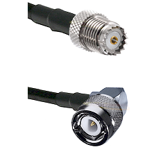 Mini-UHF Female on RG142 to C Right Angle Male Cable Assembly