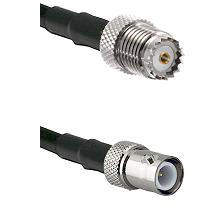 Mini-UHF Female on RG142 to BNC Reverse Polarity Female Cable Assembly