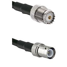 Mini-UHF Female on RG142 to BNC Reverse Polarity Female Cable Assembly