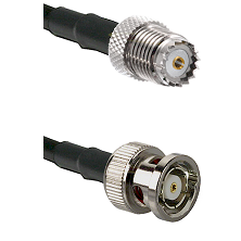 Mini-UHF Female on RG142 to BNC Reverse Polarity Male Cable Assembly