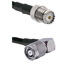 Mini-UHF Female on RG142 to TNC Reverse Polarity Right Angle Male Cable Assembly