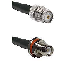 Mini-UHF Female on RG142 to TNC Reverse Polarity Female Bulkhead Cable Assembly