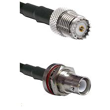 Mini-UHF Female on RG142 to SHV Bulkhead Jack Cable Assembly