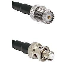 Mini-UHF Female on RG142 to SHV Plug Cable Assembly