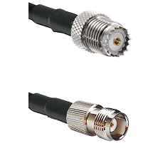 Mini-UHF Female on RG142 to TNC Female Cable Assembly
