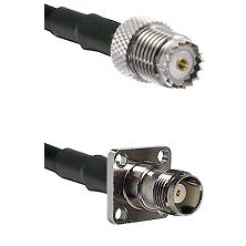 Mini-UHF Female on RG142 to TNC 4 Hole Female Cable Assembly
