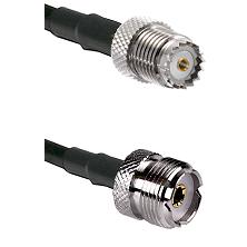 Mini-UHF Female on RG58 to UHF Female Cable Assembly