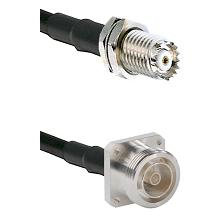 Mini-UHF Female Bulkhead on RG142 to 7/16 4 Hole Female Cable Assembly