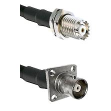 Mini-UHF Female Bulkhead on RG142 to C 4 Hole Female Cable Assembly