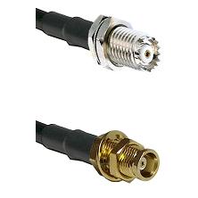 Mini-UHF Female Bulkhead on RG142 to MCX Female Bulkhead Cable Assembly