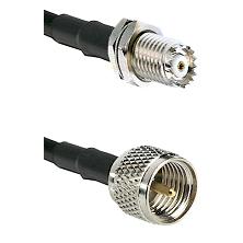 Mini-UHF Female Bulkhead on RG142 to Mini-UHF Male Cable Assembly