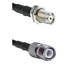 Mini-UHF Female Bulkhead on RG142 to TNC Reverse Polarity Female Cable Assembly