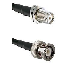 Mini-UHF Female Bulkhead on RG58C/U to BNC Male Cable Assembly
