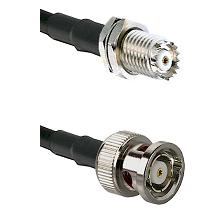 Mini-UHF Female Bulkhead on RG58C/U to BNC Reverse Polarity Male Cable Assembly