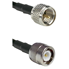 Mini-UHF Male on LMR100 to C Male Cable Assembly