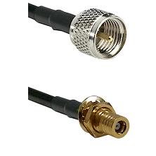 Mini-UHF Male on LMR100 to SLB Female Bulkhead Cable Assembly