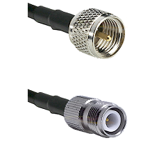 Mini-UHF Male on LMR-195-UF UltraFlex to TNC Reverse Polarity Female Cable Assembly