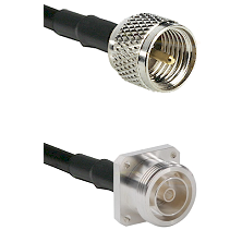 Mini-UHF Male Connector On LMR-240UF UltraFlex To 7/16 4 Hole Female Connector Coaxial Cable Assembl