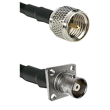 Mini-UHF Male Connector On LMR-240UF UltraFlex To C 4 Hole Female Connector Cable Assembly