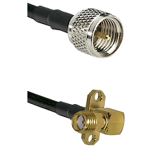 Mini-UHF Male on LMR240 Ultra Flex to SMA 2 Hole Right Angle Female Cable Assembly