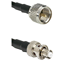 Mini-UHF Male Connector On LMR-240UF UltraFlex To SHV Plug Connector Cable Assembly