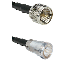 Mini-UHF Male on RG142 to 7/16 Din Female Cable Assembly