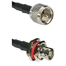 Mini-UHF Male on RG142 to C Female Bulkhead Cable Assembly
