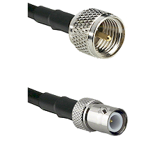 Mini-UHF Male on RG174 to BNC Reverse Polarity Female Cable Assembly
