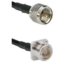 Mini-UHF Male on RG58C/U to 7/16 4 Hole Female Cable Assembly