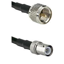 Mini-UHF Male on RG58C/U to BNC Reverse Polarity Female Cable Assembly