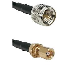 Mini-UHF Male on RG58C/U to SMC Female Bulkhead Cable Assembly
