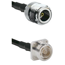 N Female Connector On LMR-240UF UltraFlex To 7/16 4 Hole Female Connector Cable Assembly