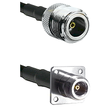 N Female Connector On LMR-240UF UltraFlex To N 4 Hole Female Connector Cable Assembly