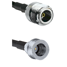 N Female Connector On LMR-240UF UltraFlex To QN Male Connector Cable Assembly