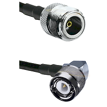 N Female Connector On LMR-240UF UltraFlex To C Right Angle Male Connector Cable Assembly