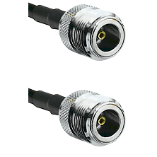 N Female on RG214 to N Female Cable Assembly