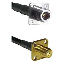 N 4 Hole Female on LMR-195-UF UltraFlex to SMA 4 Hole Female Cable Assembly