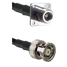 N 4 Hole Female on LMR200 UltraFlex to BNC Reverse Polarity Male Cable Assembly
