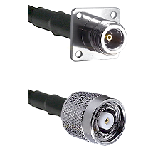 N 4 Hole Female on LMR200 UltraFlex to TNC Reverse Polarity Male Cable Assembly
