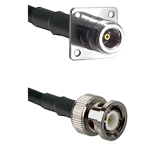 N 4 Hole Female Connector On LMR-240UF UltraFlex To BNC Male Connector Cable Assembly